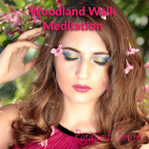 Woodland Walk Meditation